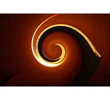 snail of light Photographic Print