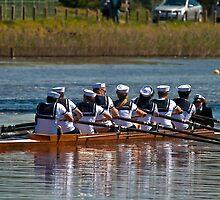 Ahoy Sailors! by Allen Gray