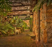 A Garden in Nannup, WA by Elaine Teague