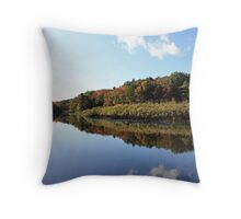 Along The Banks Throw Pillow
