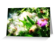 thistle butterfly 2 Greeting Card