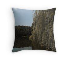 Fall on a lakeside Throw Pillow