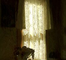Sunlight Through Lace by RC deWinter