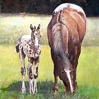 Appaloosa Mare and Foal Horse Portrait by Oldetimemercan