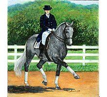 Belgian Warmblood Horse Portrait Photographic Print