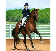 Hanoverian Dressage Horse Portrait Photographic Print