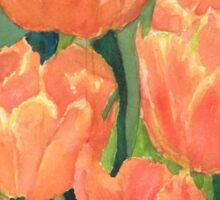 Citrus Tulips  Sticker