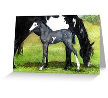 Grulla Paint Mare and Foal Horse Portrait Greeting Card