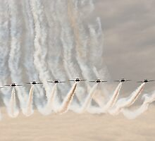Canadian Forces Snowbirds by gfydad
