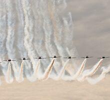 Canadian Forces Snowbirds by gfydad