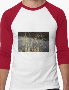 Grass Men's Baseball ¾ T-Shirt