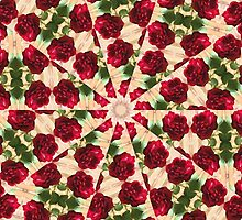 Old Red Rose Kaleidoscope 11 by Christopher Johnson