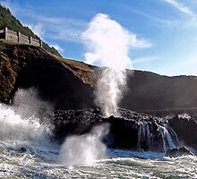 Spouting Horn Blow Hole  by Chuck Gardner