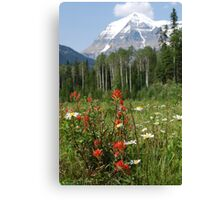 Wildflower Meadow at Mt. Robson Canvas Print