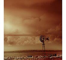 Reign on High by Nico  van der merwe