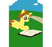 Pony Belle Photographic Print