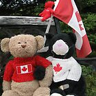 Beary Proud by L J Fraser
