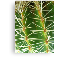 Prickly Pattern Canvas Print