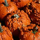 Bumpy Pumpkins by jessiebea