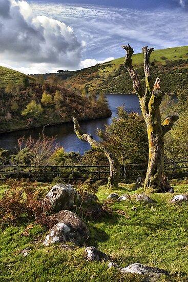 Meldon Reservoir, Dartmoor National Park, Devon by Squealia