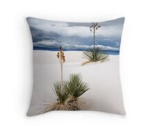 Raining Day at White Sands Throw Pillow