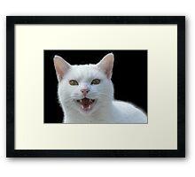 'Vampire cat, He Vants Blood!! Bwhahah....' Framed Print