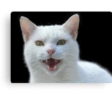 'Vampire cat, He Vants Blood!! Bwhahah....' Canvas Print