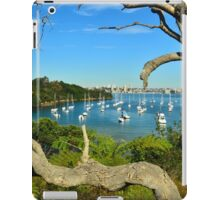Sirius  Cove iPad Case/Skin