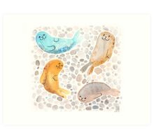 Sunbathing Seals Art Print
