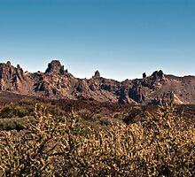 El Teide: Caldera Landscape by Kasia-D