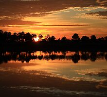 Good Morning Webb Lake by Virginia N. Fred