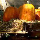 Wagon & Autumn Harvest by Ruth Lambert