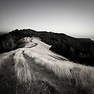 Paradise Ridge no Border by tomcelroy