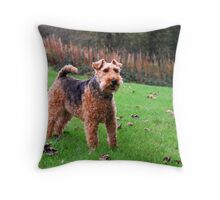 Womble in the park Throw Pillow