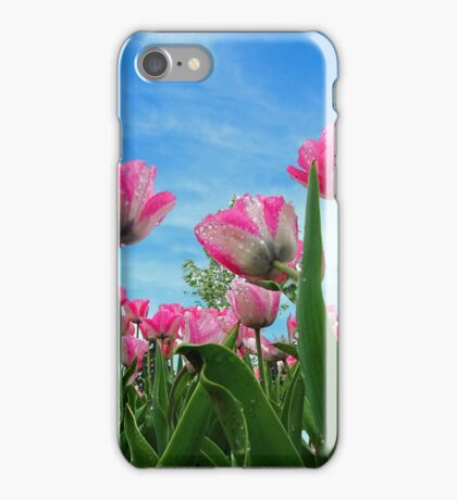 Pink Tulip Fields iPhone Case/Skin