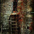 abandoned by Jeff Rinehart