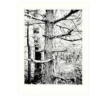 Sage Arbor Art Print