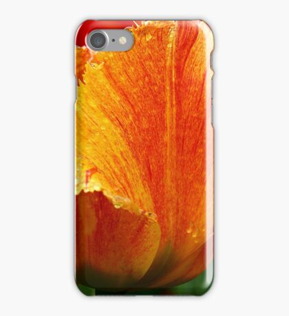 An Orange Tulip iPhone Case/Skin
