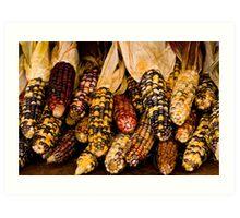 Corn A Plenty Art Print
