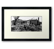 The Black Sheep Steals the Show Framed Print