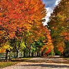 Finding Autumn by Kate Adams