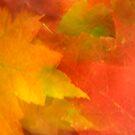 Leaf Layers by Gina Ruttle  (Whalegeek)