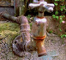 Faucet by Orla Cahill Photography