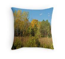Autumn Skyline Throw Pillow