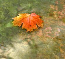 Floating downstream by MarianBendeth
