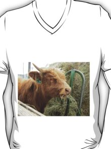 Moose  16 April 2015 T-Shirt