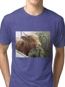Moose  16 April 2015 Tri-blend T-Shirt