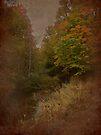 A Taste Of Autumn by Shelly Harris