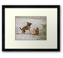 High Five!! Framed Print