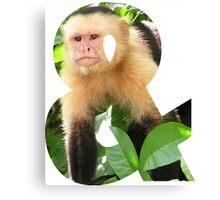 Ampersand Monkey Canvas Print